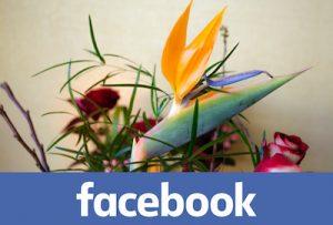 Facebook de bloemen flow